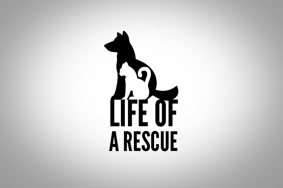 Life of a Rescue